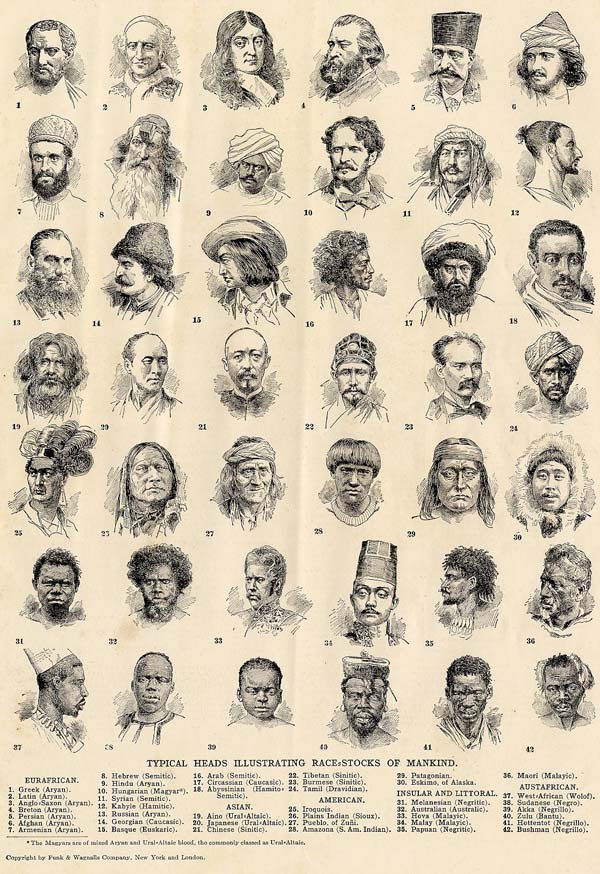 afbeelding van prent Typical Heads Illustrating Race-stocks of Mankind van Funk&Wagnalls Company
