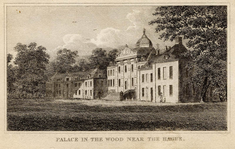 afbeelding van gezicht Palace in the wood near The Hague van nn (Den Haag, �s-Gravenhage, The Hague)
